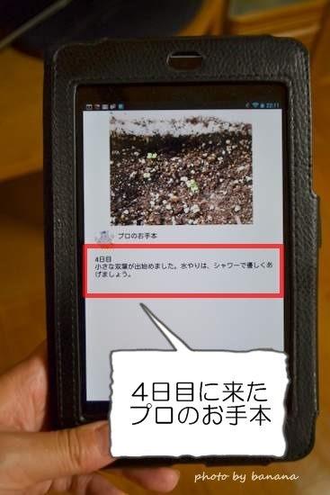 家庭菜園初心者用アプリ