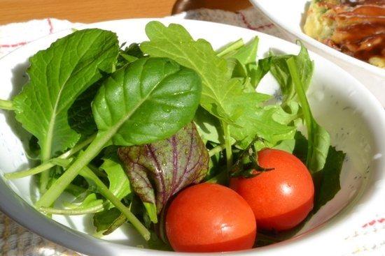 子どもの野菜嫌い克服に家庭菜園
