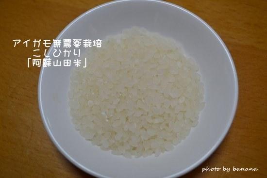 アイガモ農法で無農薬のお米