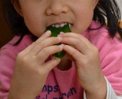 野菜嫌いの子供が生で食べるピーマン