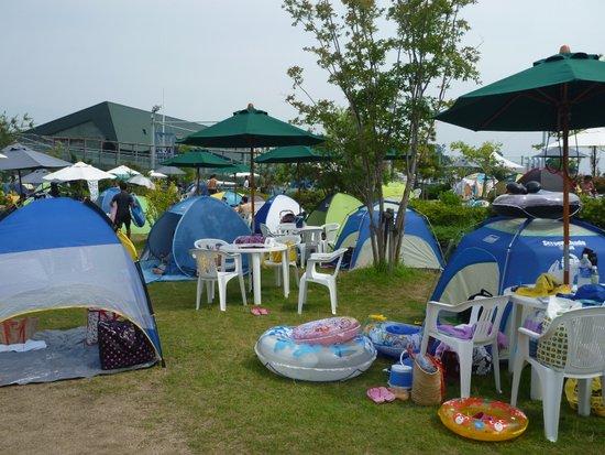同じようなテントが並ぶプールサイド